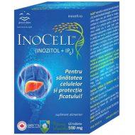 Ajuta la protectia celulelor de stresul oxidativ care poate provoca mutatii genetice.